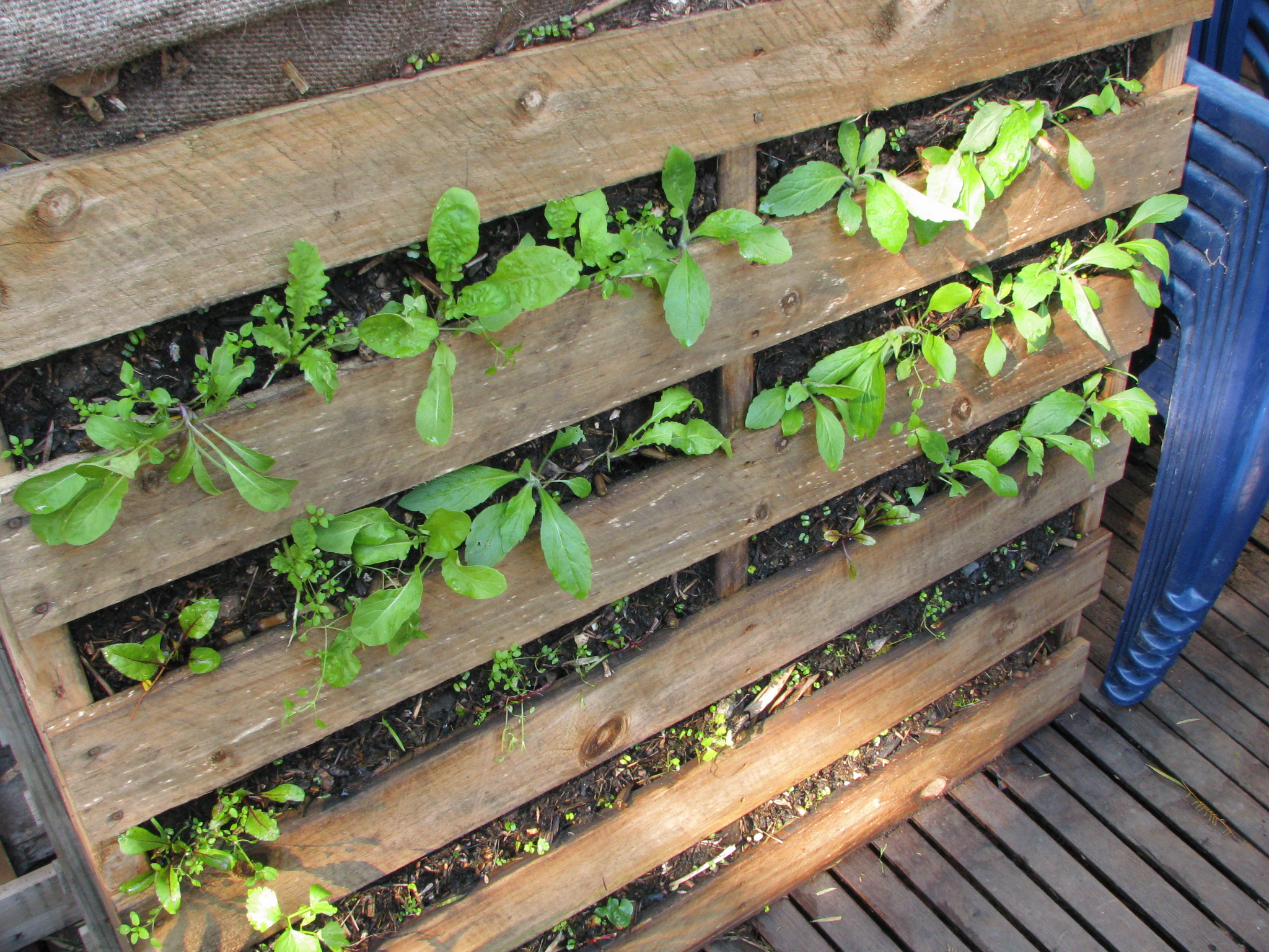 Reduce reuse recycle ordinary 2 extraordinary - Reusing pallets in the garden ...